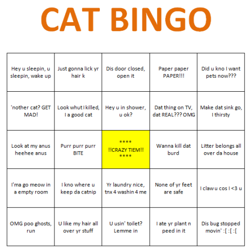 skoolmunkee:  I was bored and I made a Cat Bingo. If you get a Bingo you have a Good Cat. If you get more than one Bingo you have a Normal Cat. If you get all the Bingos your cat is a Giant Jackass.