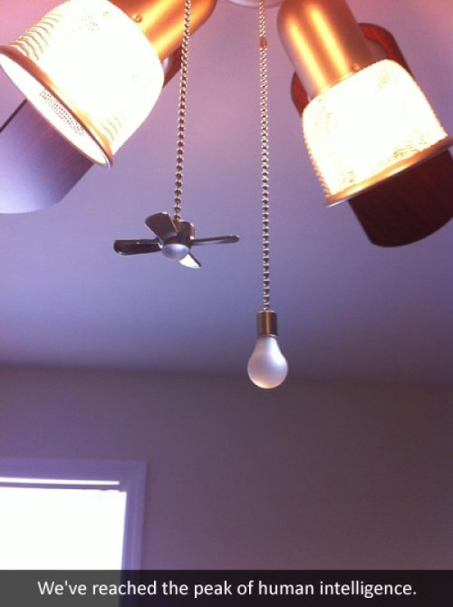 "collegehumor:  Ceiling Fan Has Genius Pull Chains So You Never Get Confused The time we'll all save…  ""We've reached the peak of human intelligence."" LOL."