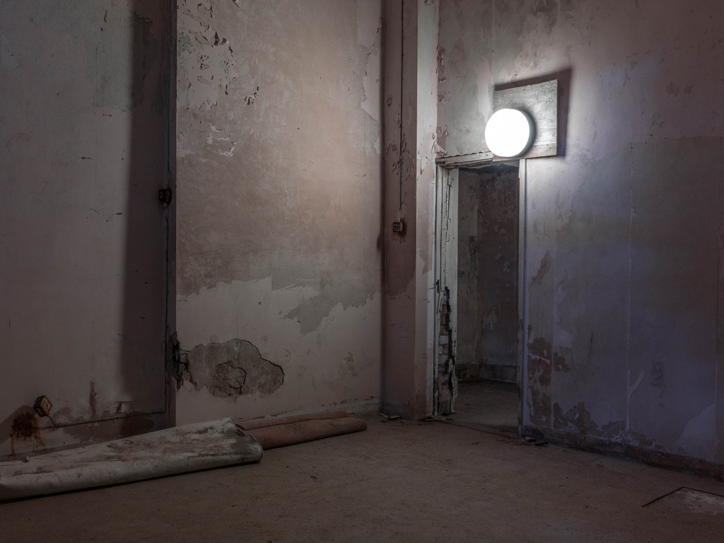 light, poltimore house, 2013