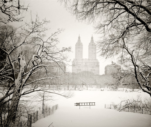 "Central Park winter landscape. San Remo through snow-covered trees. New York City   Summer's memories sit suspended like words caught in the throat of winter: stifled, muffled utterances barely able to escape in the form of speech.   But in the wide open expanse of dreams, words take flight as summer's memories break through the shards of branches conjuring up the outline of buildings and cityscapes on the condensation of winter's frozen breath.   —-  View this photo larger and on black on my Google Plus page  —-  Buy ""Suspended - San Remo - Winter - Central Park- New York City"" Posters and Prints here, email me, or ask for help."