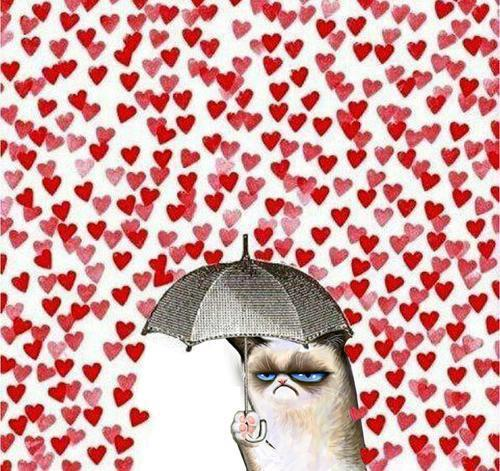 Oh hai guys, just me enjoying Valentine's Day :'D