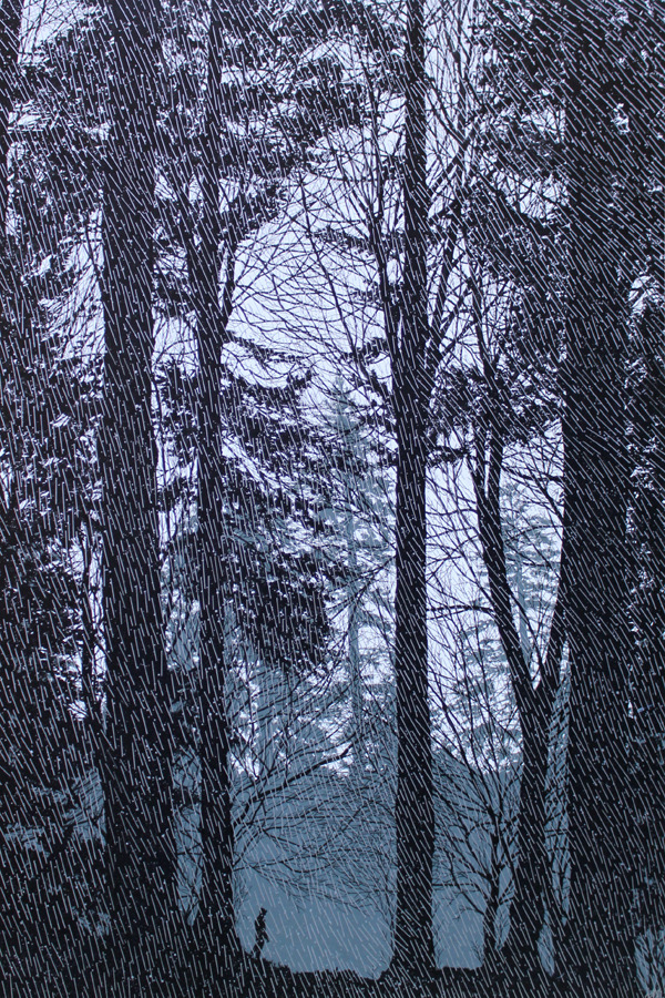 "Dan McCarthy. The Rain Had A Sound, 2010. Acrylic on board, 36 x 24""."