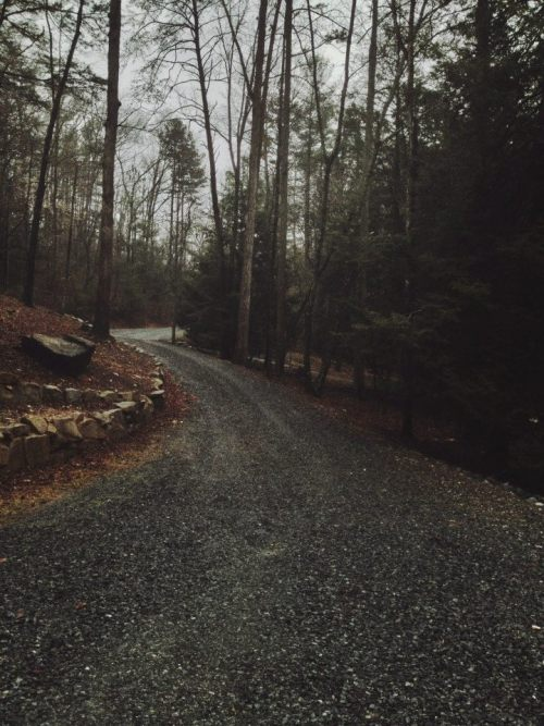 underthecarolinamoon:  Looks exactly like the driveway to my family's cabin in the mountains.