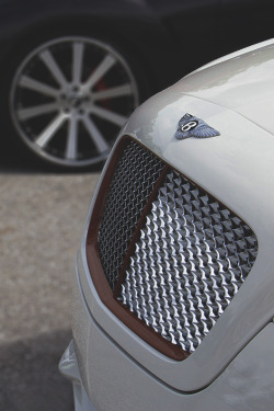 johnny-escobar:  Bentley CGT
