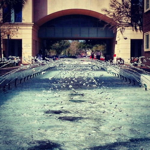 #water #droplets #fountain #ripples #rows #sunlight #downtowndeland #deland #Volusiacounty
