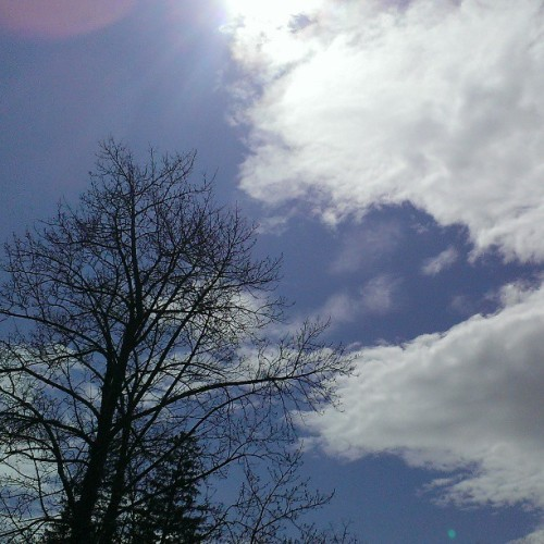 Sun's out, time to celebrate spring :) #sun #spring #happy #cloudporn #clouds #sunny #trees #college #hamilton  (at Hamilton College)