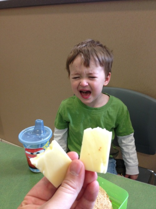 reasonsmysoniscrying:  I broke this cheese in half.