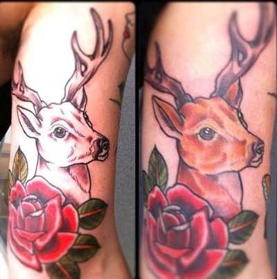 goodinkny:  Traditional Deer SleeveArtist: Aaron Hingston Many meanings of a deer tattoo Nobility Rebirth Benevolence and KindnessPea…View Post