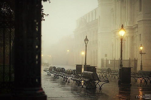 Foggy Day, New Orleans, Louisiana photo via goatman