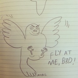 FLY AT ME BRO