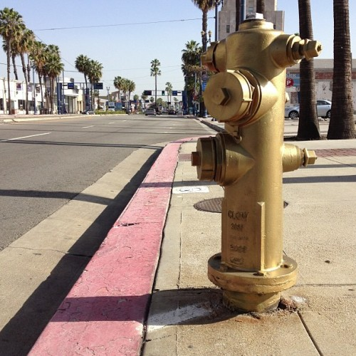 Gold fire hydrants in #longbeach #california.