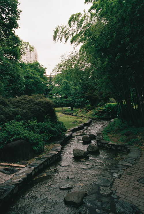 italdred:  A babbling water-course after rain, Shanghai (by davidzlu)