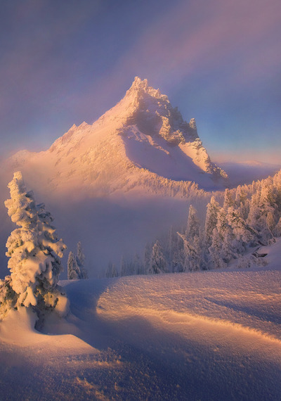 0rient-express:  Clearing (by Marc Adamus).