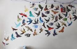 fiebre:  serendipity-precious:  le bird wall! by julia wang. on Flickr.  <333333