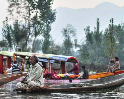 jtaimejadore:  Srinagar, India (by korzh roman)   Shikaras on Dal lake, Srinagar