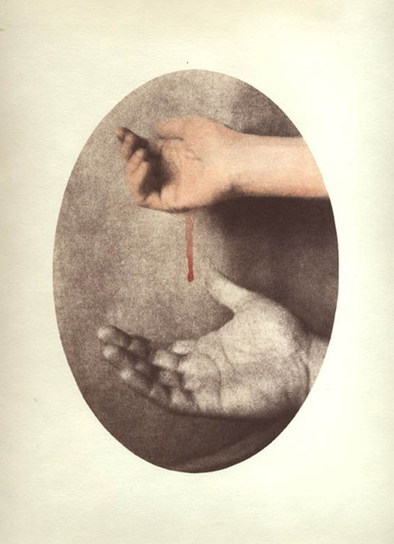 andreinaescala:  Dan Estabrook - Bleed, 2007