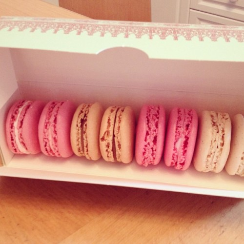 #laduree #macaroons #rose #saltedcaramel #bubblegum #marshmallow #vanilla #yum #foodporn #foodgasm #dessert #delicious #perfection #heaven