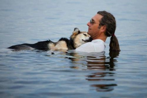 arcaneimages:  Schoep, a 19 year old dog, is taken into the lake every night by his owner, John, to help soothe his arthritis and help him fall asleep.