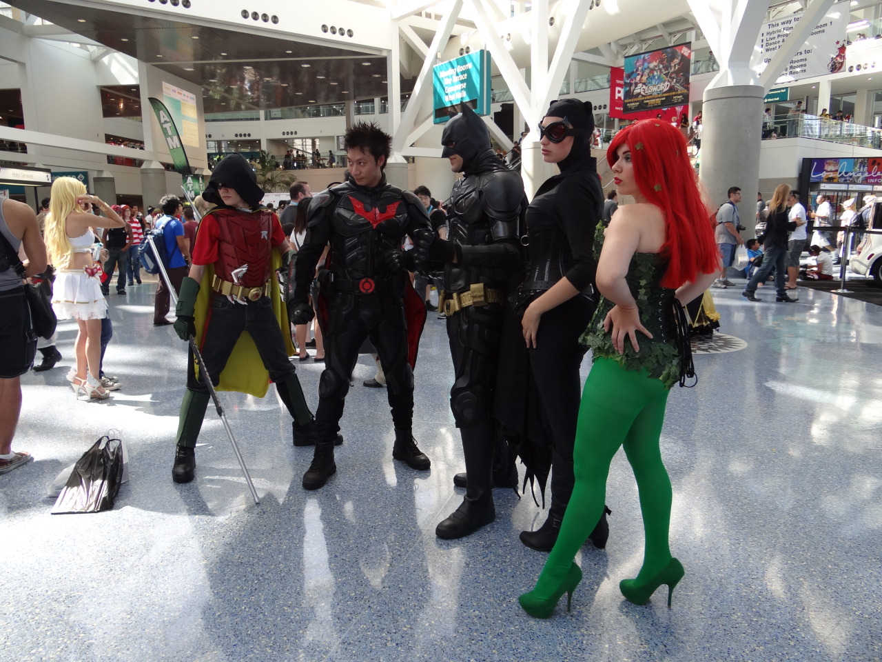 koalalove121:  Robin, Nightwing, Batman, Catwoman, and Poison Ivy