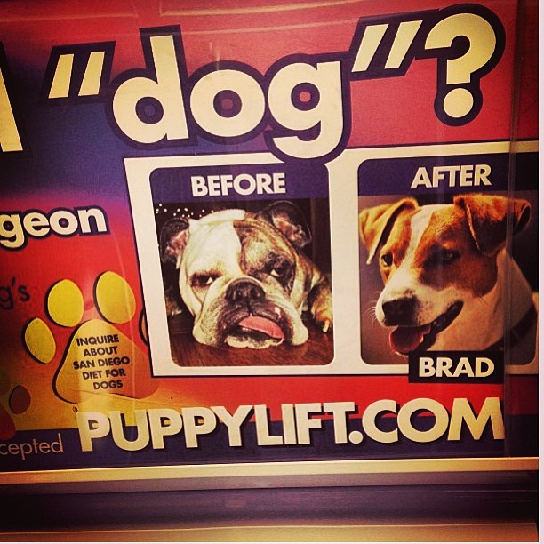 #lmao #puppylift #closeup  (at FAKE DR ZIZMORE)