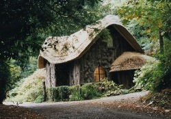 Cottage, Blaise Woods, Bristol, England photo via barbara