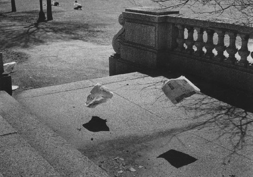 phuongnguyen89:  Yasuhiro Ishimoto, Untitled (steps of The Art Institute of Chicago), 1950s  Why does this photo break my heart? </3