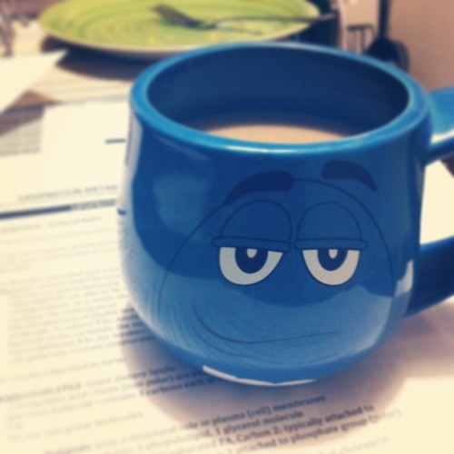 Coffee at this hour is probably a bad idea. Even my mug is smirking at me. #exhausted #12AM #medschool