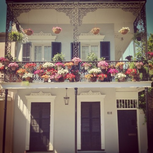 Some flowers? #road #drive #architecture #art #nola #neworleans #house #building #flowers #color #bright