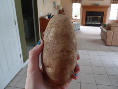 akatumbling:  kit-k4ts:  potato!!!1!!  looks like me tbh
