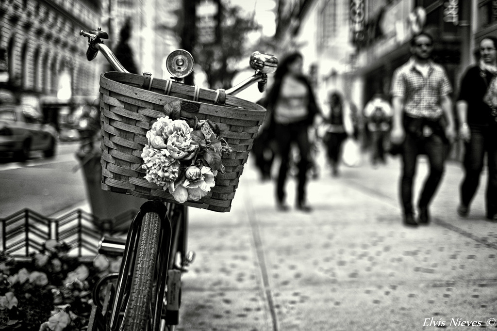 Bike with flowers (by Elvis Nieves Photography)
