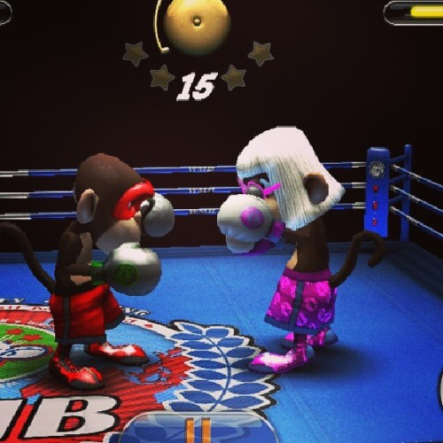 Monkey boxing, VS Monkey Gaga