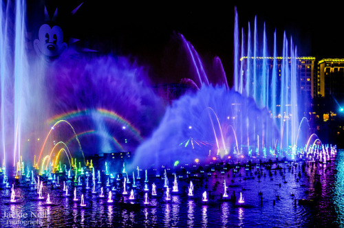 jackoraptor:  World of Color on Flickr.