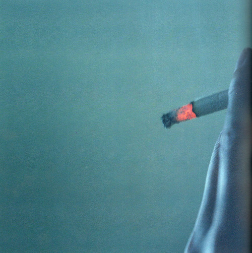 untrustyou:  Rinko Kawauchi