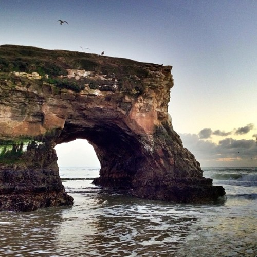 Arch after sunset (at Natural Bridges State Beach)
