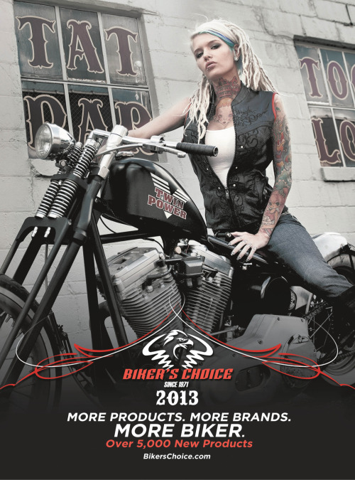 Alloy Ash - bikers choice 2013 catalog