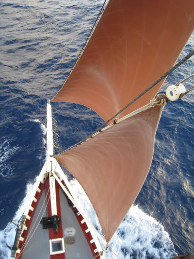 samsamanthor:  Roseway's bow from up her foremast.