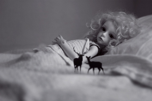 untitled by oso_polar on Flickr.[Dollstown 7 Seola]