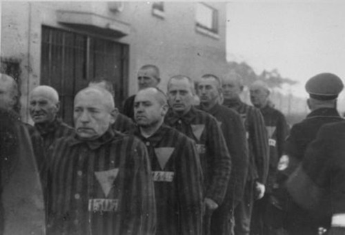 "anti-clerical:  ramirezbundydahmer:  When the Nazi concentration camps were liberated by the Allies, it was a time of great jubilation for the tens of thousands of people incarcerated in them. But an often forgotten fact of this time is that prisoners who happened to be wearing the pink triangle (the Nazis' way of marking and identifying homosexuals) were forced to serve out the rest of their sentence. This was due to a part of German law simply known as ""Paragraph 175"" which criminalized homosexuality. The law wasn't repealed until 1969.  This should be required learning, internationally."