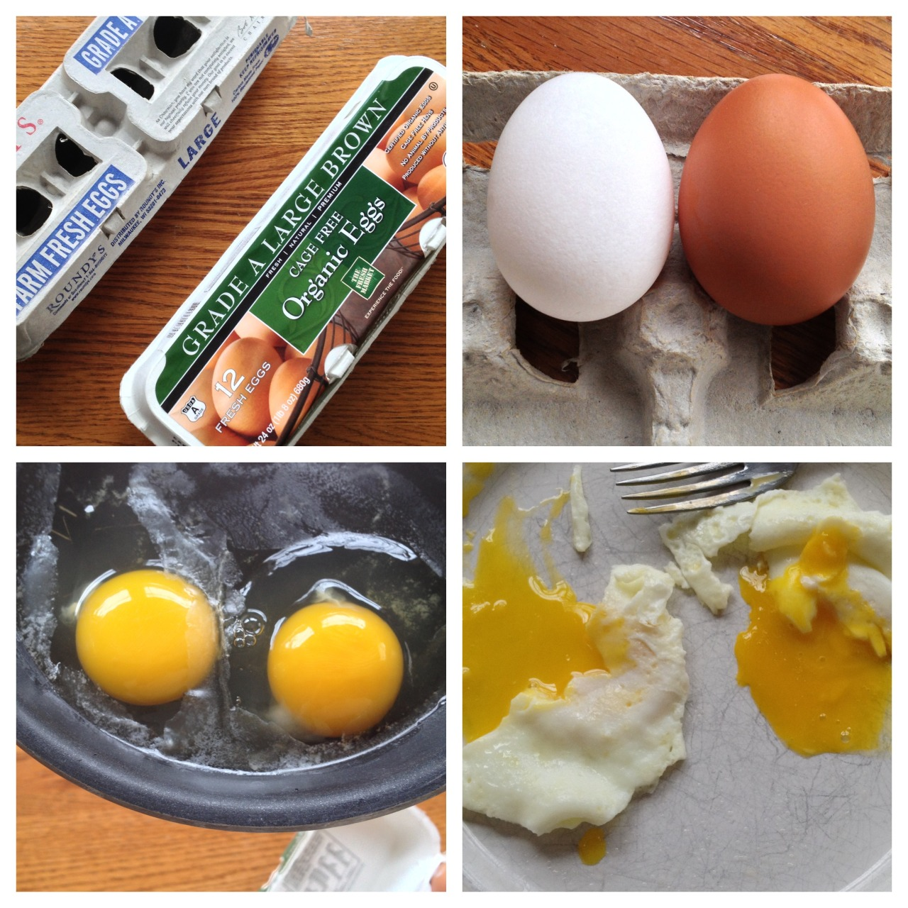 So I conducted an eggs-periment this morning for breakfast. What is the difference between a regular grocery market egg and a organic/cage-free egg? Price is certainly one thing. But taste? Kind of. If you blind tested me, I may not know which is which. But Kristin and I both could tell that the organic egg had a richer golden color. I can't prove that it was because of being organic. Maybe something else in the chickens diet caused the deeper color. I did notice (and from my past experience) that regular eggs have a more fragile shell when you break them. Thin and brittle. Not so with the organic eggs. I would say that MAYBE taste and texture was a little better with the organic egg. But best yet - it should have higher nutritional value and omega 3's and no hormones and antibiotics. Those will probably get us some day. Anyways, thought someone would find this interesting. Note that a egg may be organic, but not cage-free. I pictured my cage-free chicken roaming a field outside the barn in the sunshine which made me feel good. I bet it was a healthy and happy chicken at one time..