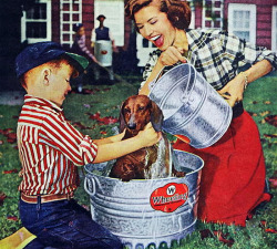 rogerwilkerson:  Dog Wash - 1957
