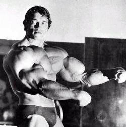 Arnold's swole arms  [view all posts of Arnold]