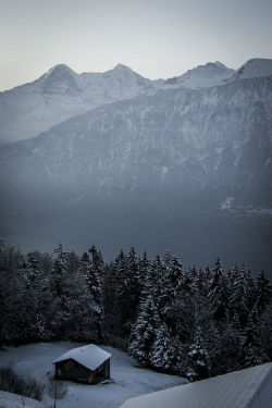 1wantchange:   Alps