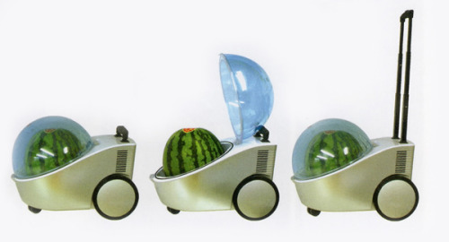 The Portable Watermelon Fridge - JOYBOND via Rocket News