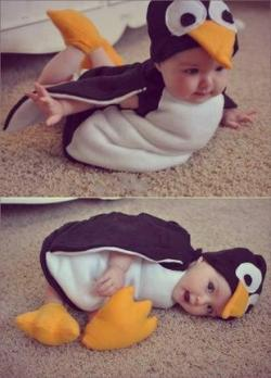 Penguin baby on We Heart It - http://weheartit.com/entry/62125798/via/racheldodol   Hearted from: http://lockerz.com/feed?sort=hot&type=all&ref=dara.aulydia5581