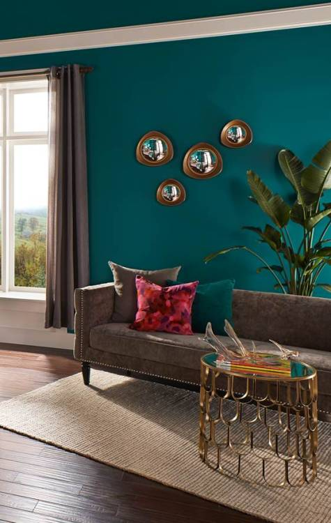 Rich teal hue of behr premium plus ultra coats the walls and ceiling