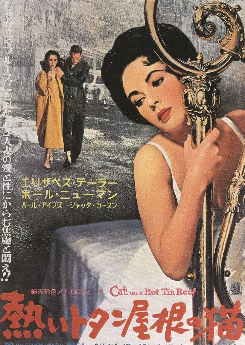 meganmonroes:  Cat On A Hot Tin Roof (1957)