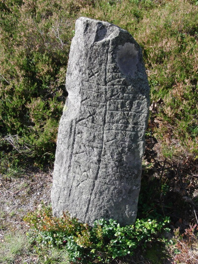 varlys:  The runestone in Fyresdal, Norway.
