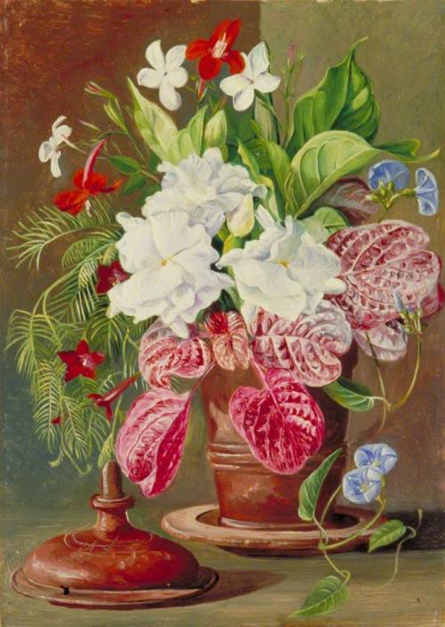 paintingispoetry:  Marianne North, Brazilian Flowers, 1873