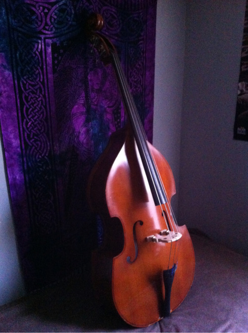 A pic of the new bass! Incredibly blown that I'm not gonna be able to play it consistently until the end of the semester. - Johnnie http://www.fb.com/kearsebrothers http://www.soundcloud.com/kearsebrothers