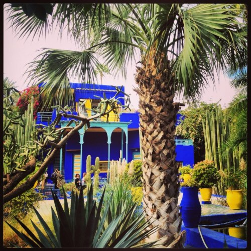 Yves Saint Laurent garden in Marrakech. I want to travel here one day. Wait, I have to do and I will. Although just a simple picture, I find it a symbolizing a life I'd want.  A life of beauty, love, and peace that is rich in culture and created by your surroundings that you've built. Imagine stepping into a scene that promotes a healthy life, away from society's fake facade and that misconstrued  'chase that paper' mentality. lol!  Beauty, love and culture right in front of you! Your only response is to create from what the world gives you. And if the world only gives you love and beauty, then your only tools are love and beauty. hah! And it all starts within.      Photo: by a friend named, Clemence. A fb pic. Not sure if she want there, but it stopped me from what I was carrying on with the day…now time to carry on